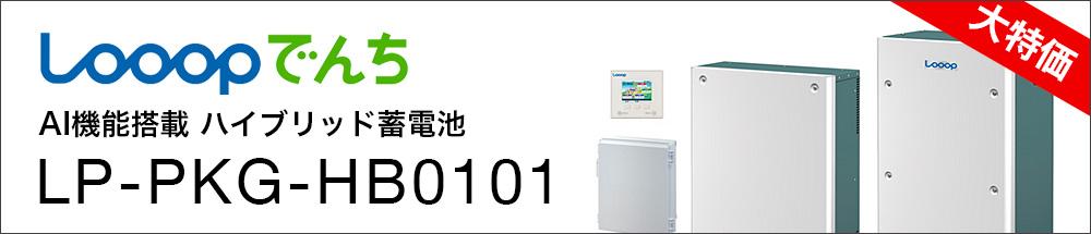 Looop LP-PKG-HN0101