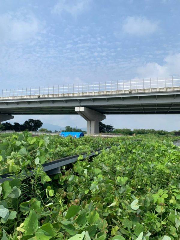 実績・評判口コミ画像02-奈良県田原本町 49.5kw 低圧 メンテナンス