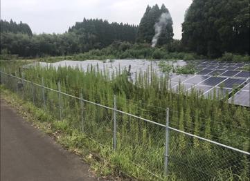 実績・評判口コミ画像03-宮崎県国分町 49.8kw 低圧 メンテナンス