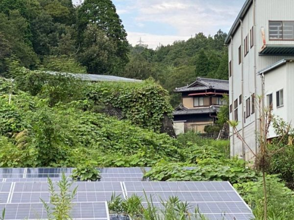 岐阜県49.5kw低圧 メンテナンス