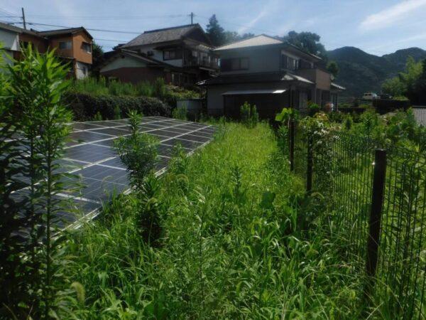 実績・評判口コミ画像03-佐賀県 49.5kW 低圧 メンテナンス