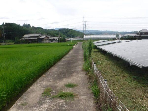 実績・評判口コミ画像02-佐賀県 49.5kW 低圧 メンテナンス