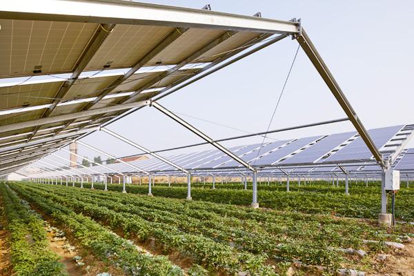 太陽光発電事業売買