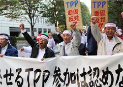 日本のTPP交渉参加と我が社は関係があるのか?