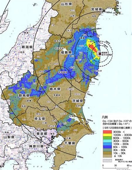 収まらない放射能汚染。関東各地はどう対処する?